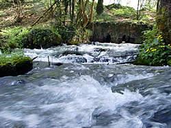 Cascade pres d'Orval